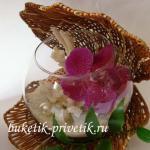 Аквариум с орхидеей