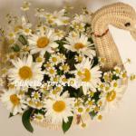 Корзина с цветами ромашки