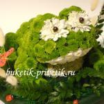 Лягушка из живых цветов