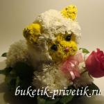 Котенок из цветов